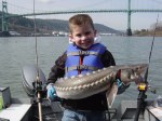 Layton's keeper sturgeon