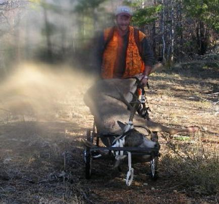 BELL CARTS HIS BUCK DOWN THE MOUNTAIN. (TOM WALGAMOTT)
