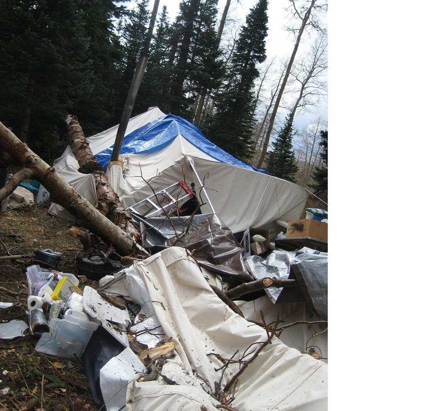 MEDVED SAYS A u201cONCE IN A DECADEu201d STORM TOPPLED AN OLD ASPEN TURNING THIS WALL TENT INTO A LIMP PILE OF CANVAS. (RAINIER TENTS PHOTO CONTEST)  sc 1 st  Northwest Sportsman Magazine & Hunting Camp